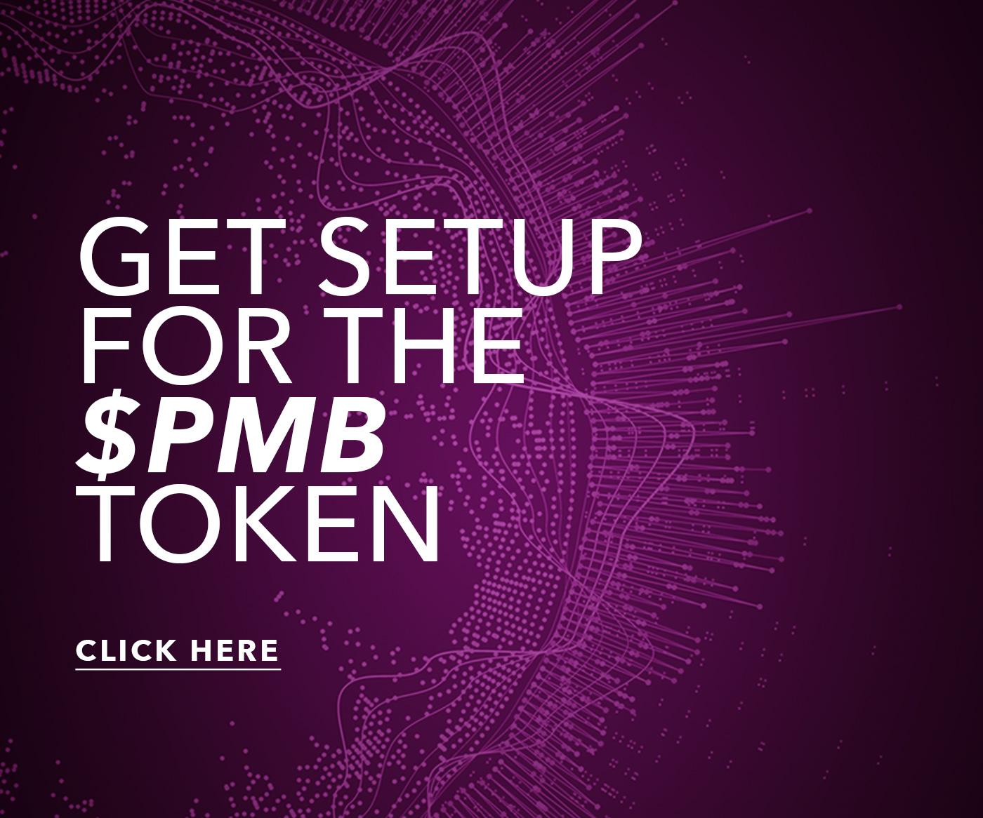 pmb pulse app